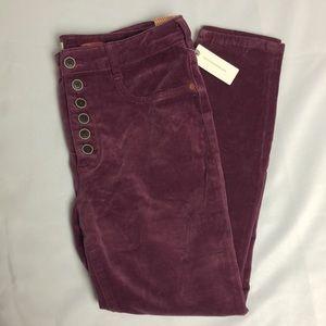 🌈2/99$🌈 NWT Anthro Pants